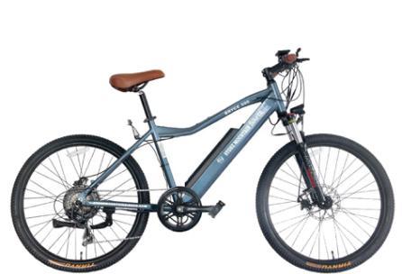 hilton head e-bike rental