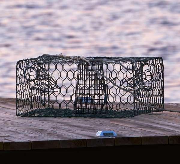 rent crab traps